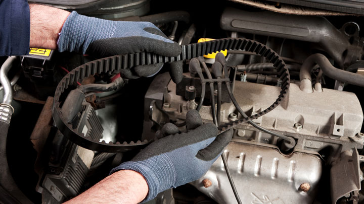 timing belt replacement cost