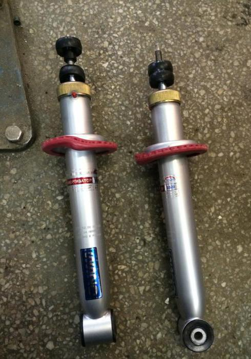 correct replacement of the rear struts VAZ 2109